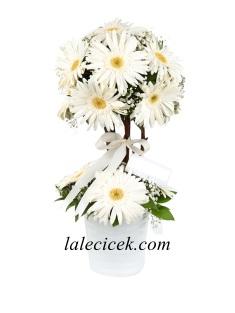 Adıyaman çiçekçi Siparişi